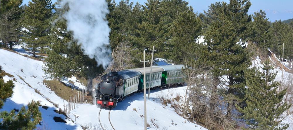 A scenic train travels across La Sila National Park at 1,400m