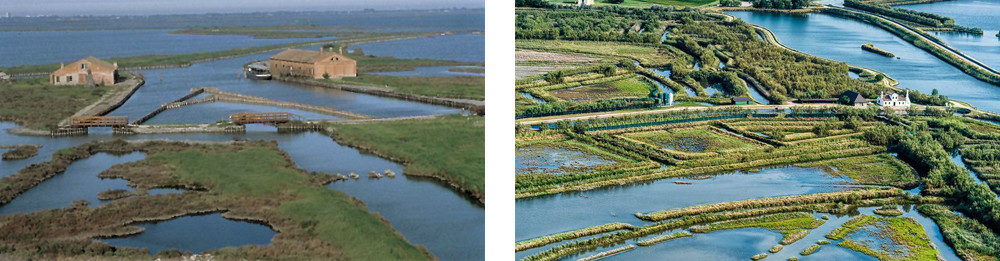 The Regional Park of the River Po Delta features a wide eco-system of waterways