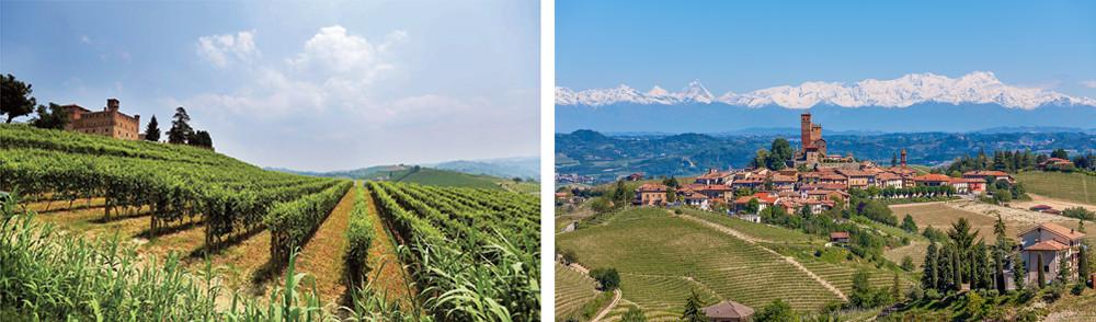 Piemonte Region – Vineyards and castles in the Langhe district